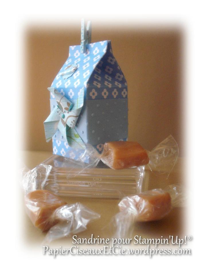 cadeau mini boîte à lait milk carton stampin up