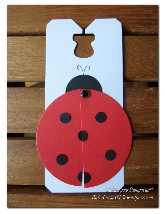 coccinelle fermée papierciseauxetcie.wordpress.com stampin up