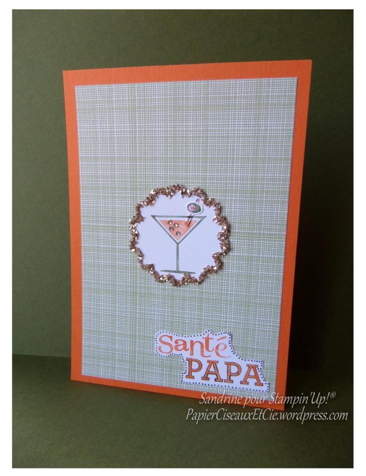 carte fêtes des pères 4 stampin up sandrine greusard