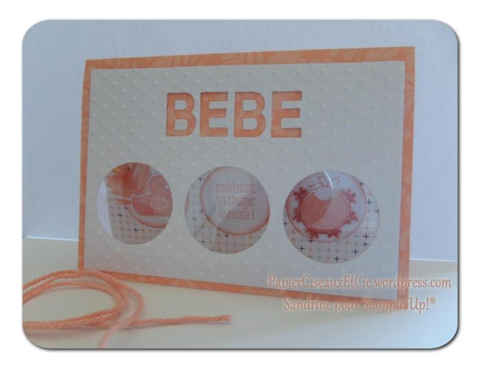 stampin up besançon something for baby papierciseauxetcie détail 3