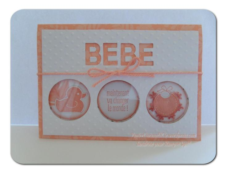 stampin up besançon something for baby papierciseauxetcie.wordpress