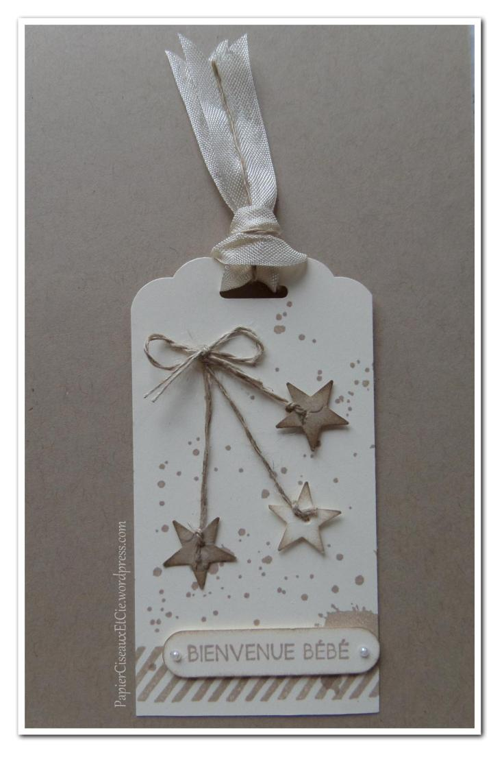 tag brune dune papierciseauxetcie stampin up