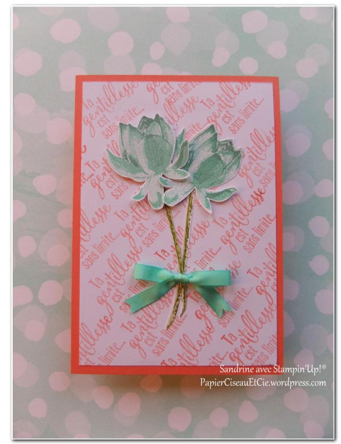 Blog hop SAB 2015 Stampin Up PapierCiseauxEtCie