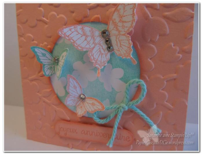 carte papillon atelier charlotte détail