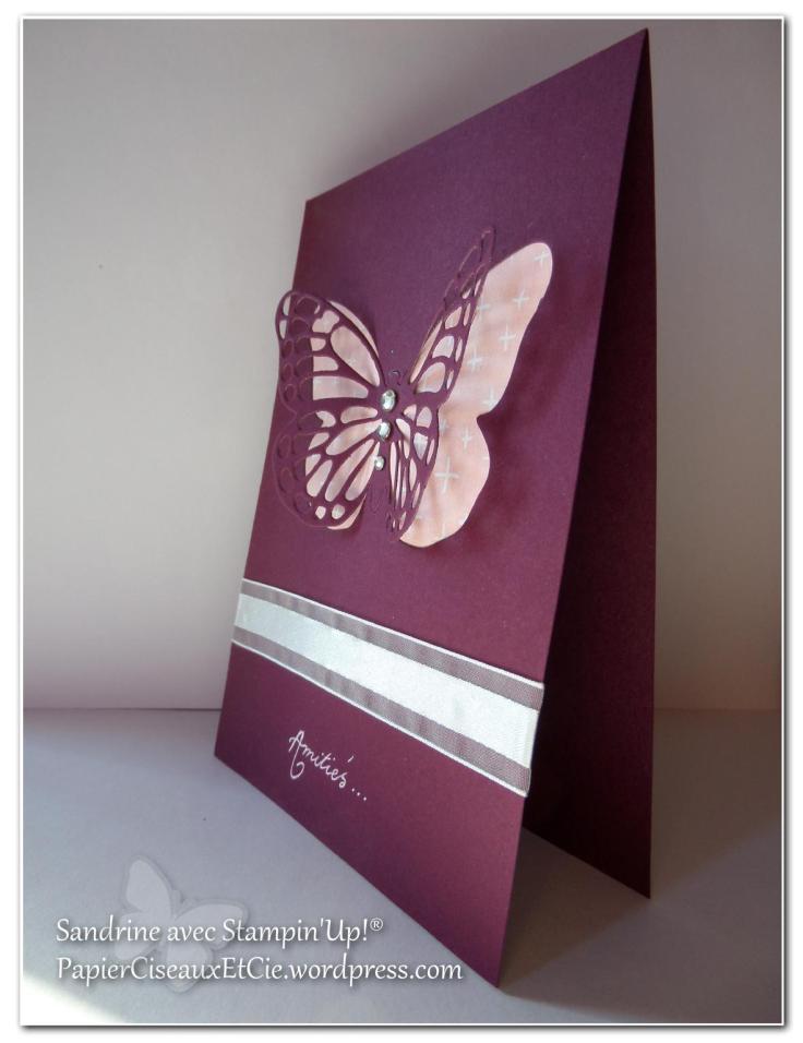 papillon faux laser 11portrait