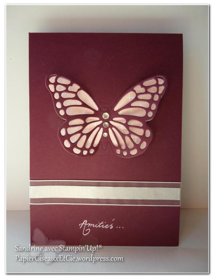 papillon faux laser 12