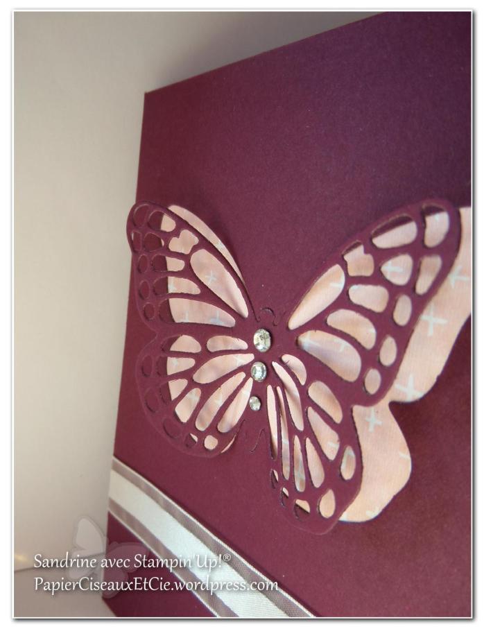 papillon faux laser 13