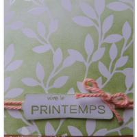 Blog hop de la Stampin'Class, spécial Printemps: carte pop up fleurie!