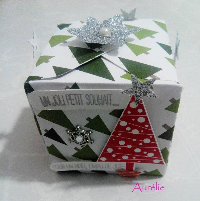 noel-aurélie