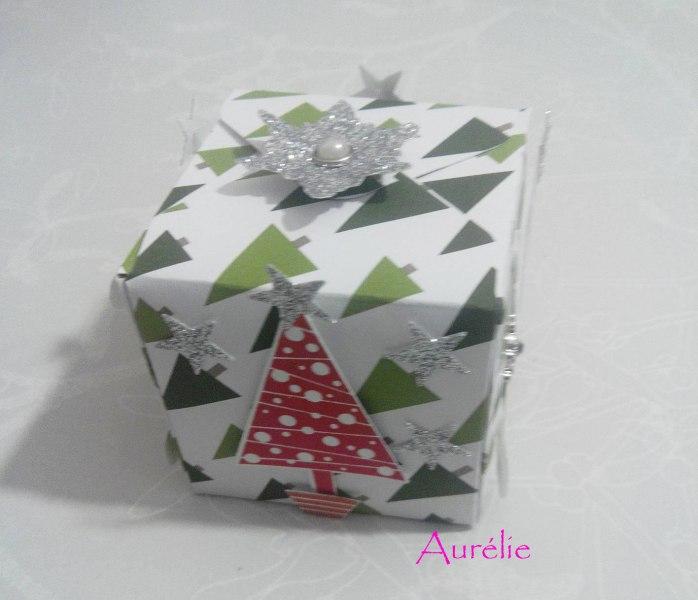 noel-aurelie2