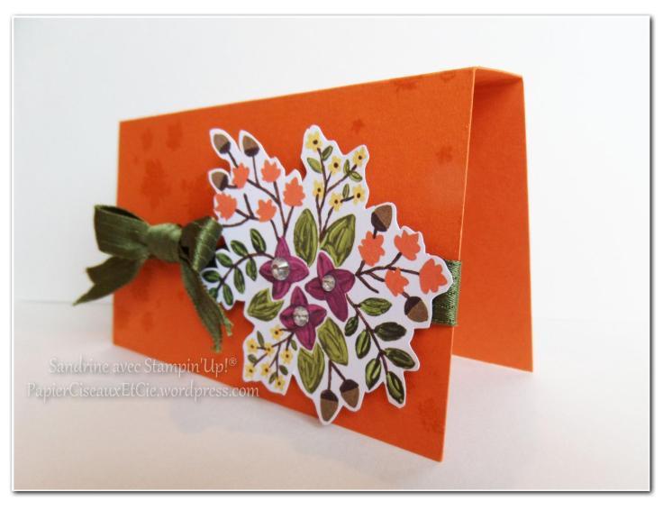 paquet cadeau stampin up papiercieseauxetcie 2