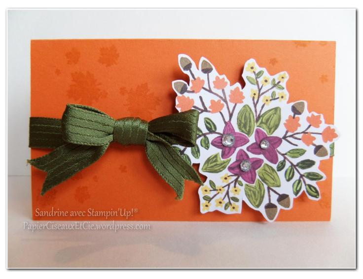 paquet cadeau stampin up papiercieseauxetcie
