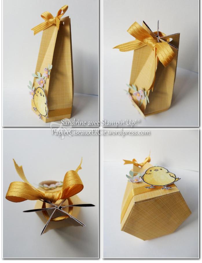 boîte avec tuto en ligne pâques sandrine stampin up papierciseauxetcie vue d'ensemble