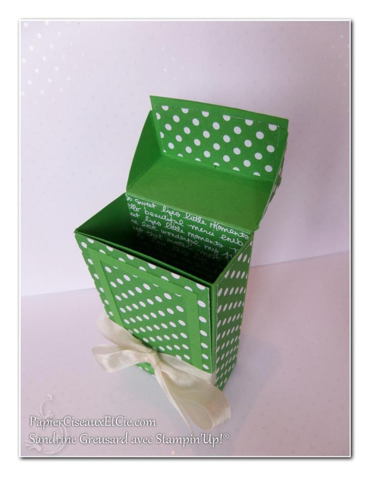 1 papierciseauxetcie onstage stampin up échantillon concombre à croquer boite detail 2