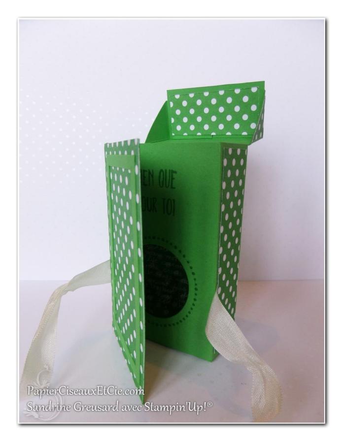 1 papierciseauxetcie onstage stampin up échantillon concombre à croquer boite detail 3