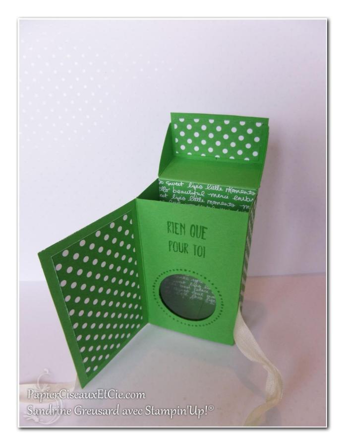 1 papierciseauxetcie onstage stampin up échantillon concombre à croquer boite detail 4