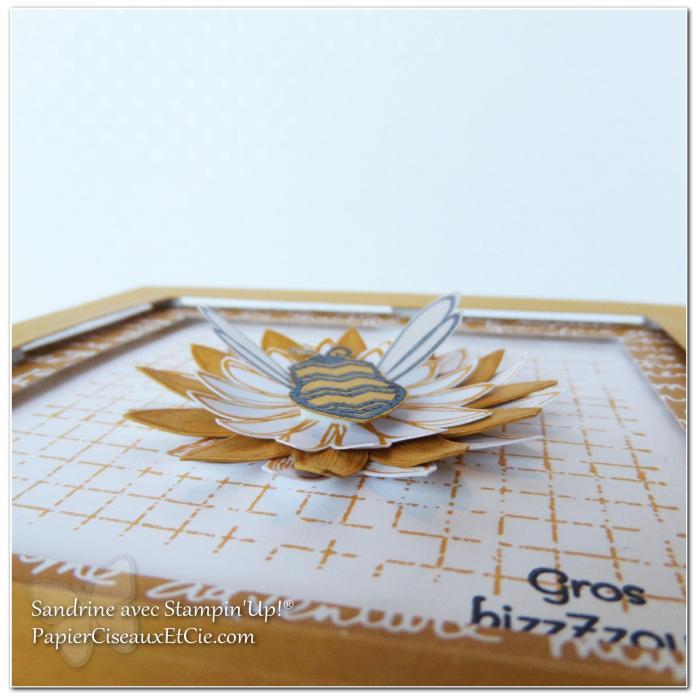 1 papierciseauxetcie onstage stampin up échantillon délice dijon carte2 detail2