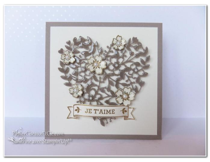 1 papierciseauxetcie onstage stampin up échantillon tip top taupe carte