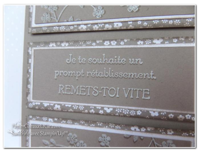 1 papierciseauxetcie onstage stampin up échantillon tip top taupe carte2 détail1
