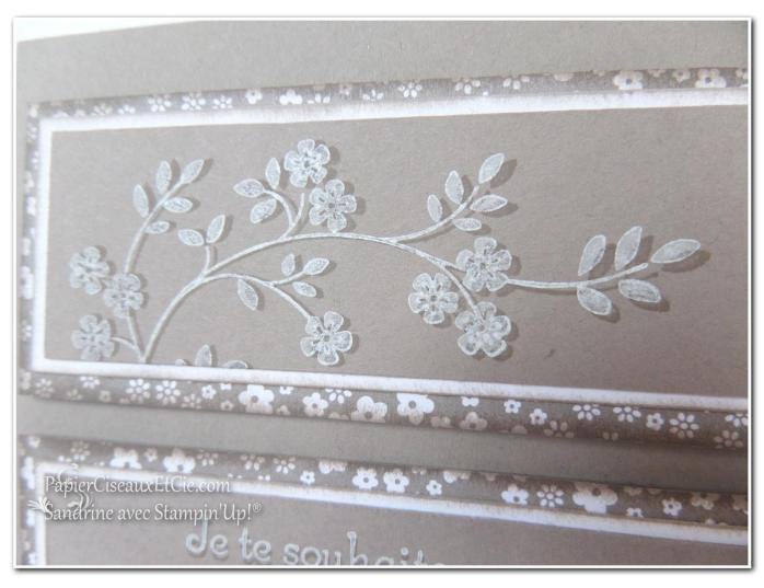 1 papierciseauxetcie onstage stampin up échantillon tip top taupe carte2 détail2
