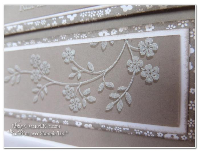 1 papierciseauxetcie onstage stampin up échantillon tip top taupe carte2 détail3
