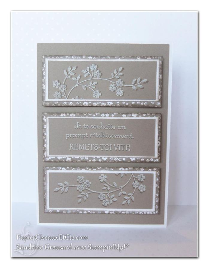 1 papierciseauxetcie onstage stampin up échantillon tip top taupe carte2