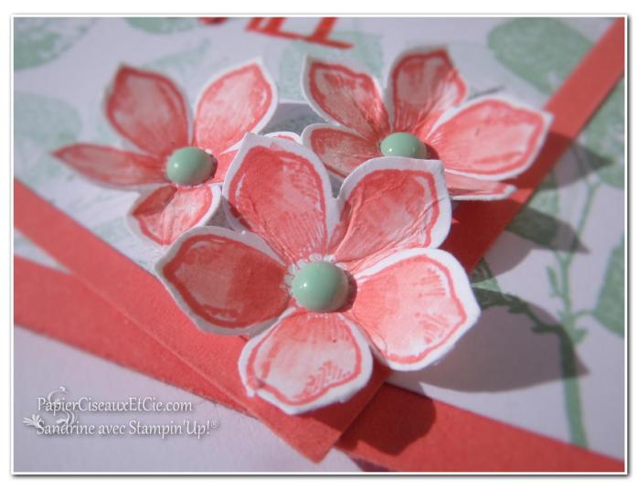 papierciseauxetcie blog hop stampin up printemps fond encré detail