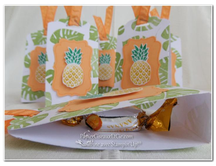 pop of paradise pineapple ananas stampin up 2 papierciseauxetcie.com