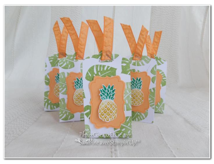 pop of paradise pineapple ananas stampin up papierciseauxetcie.com