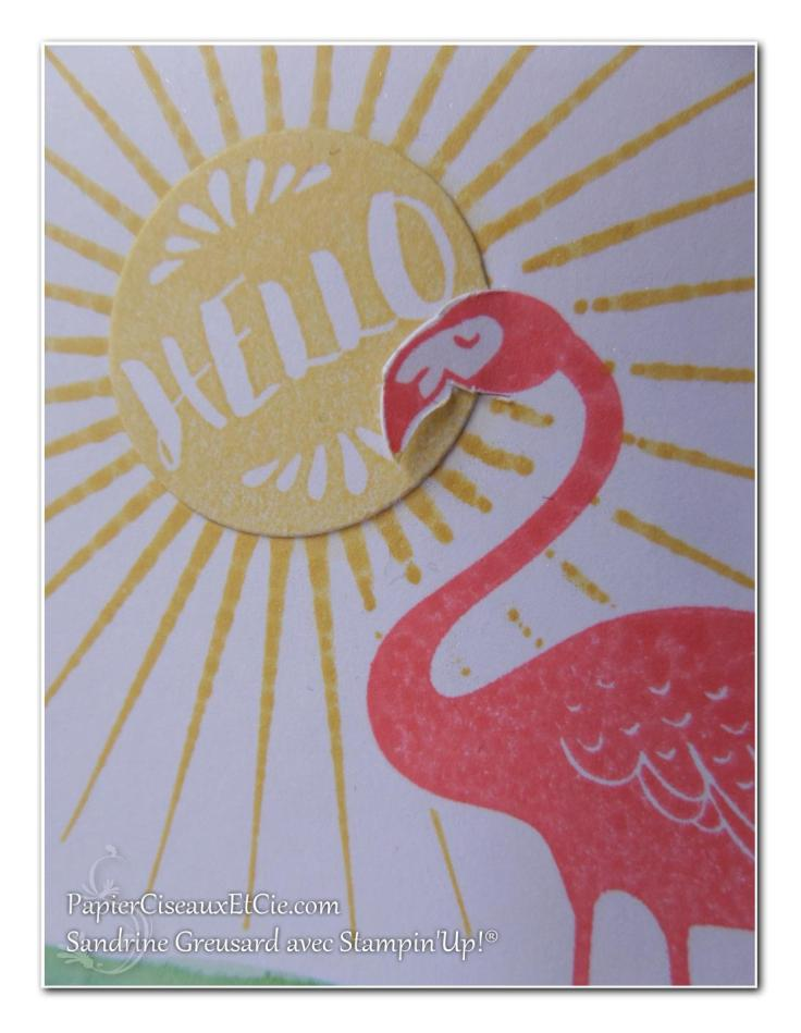 pop of paradise stampin up blog hop détail papierciseauxetcie