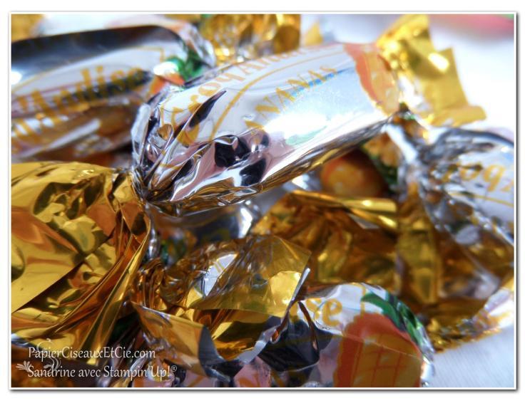 pop of paradise stampin up swap bonbons papierciseauxetcie