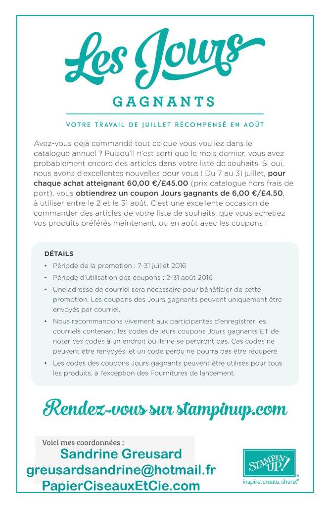 Jours-gagnants-Sandrine-Greusard