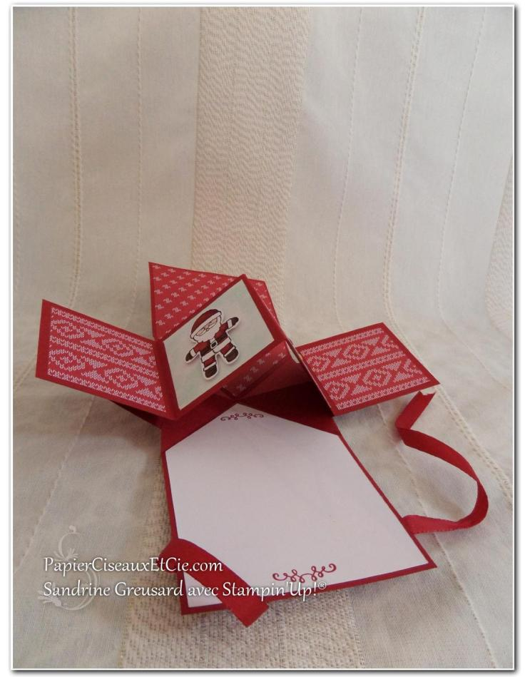 carte-twist-5-stampin-up-papierciseauxetcie-detail
