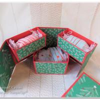 Blog Hop des démonstratrices Stampin'Up: Noël en vue!!!