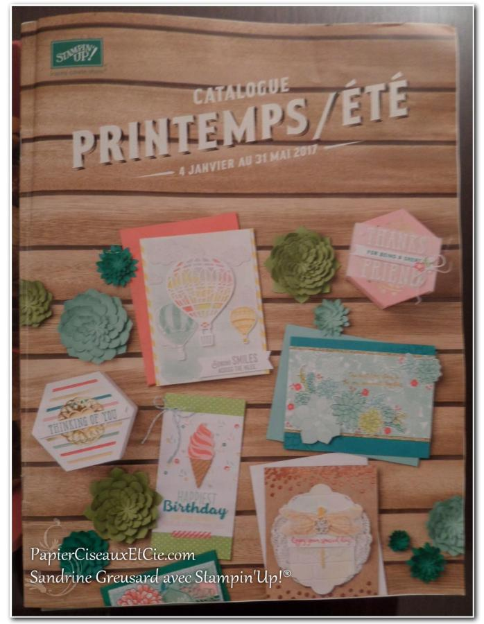 onstage-stampin-up-papierciseauxetcie-catalogue-printemp-ete