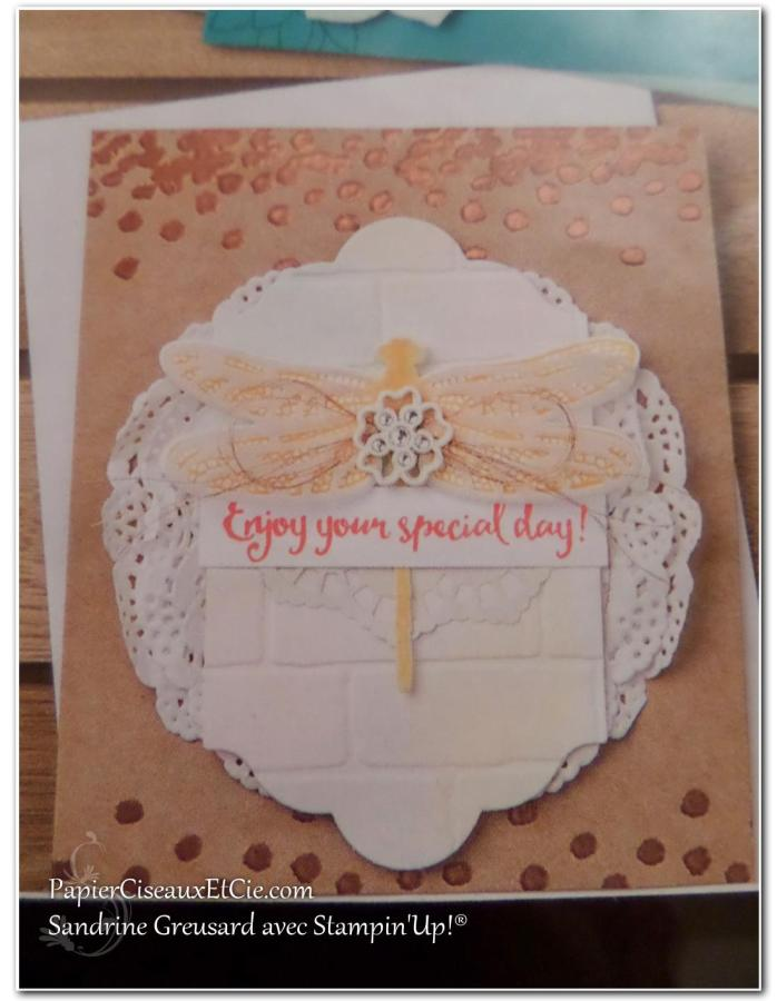 onstage-stampin-up-papierciseauxetcie-catalogue-printemps-ete-detail5