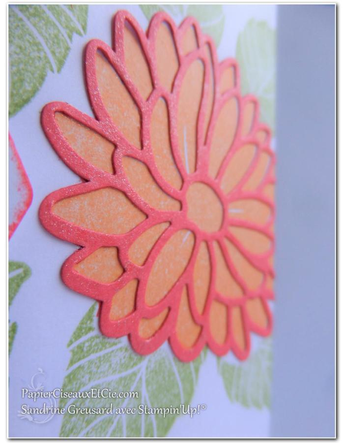 carte-raison-speciale-special-reason-143403-142899-sandrine-papierciesauxetcie-demo-stampinup-detail