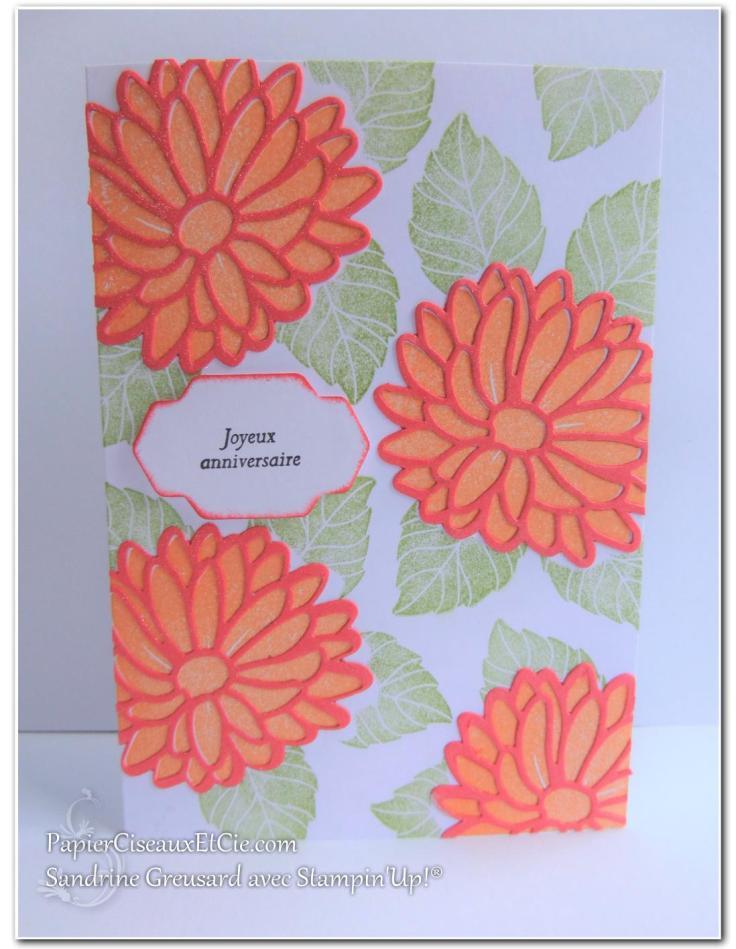 carte-raison-speciale-special-reason-143403-142899-sandrine-papierciesauxetcie-demo-stampinup