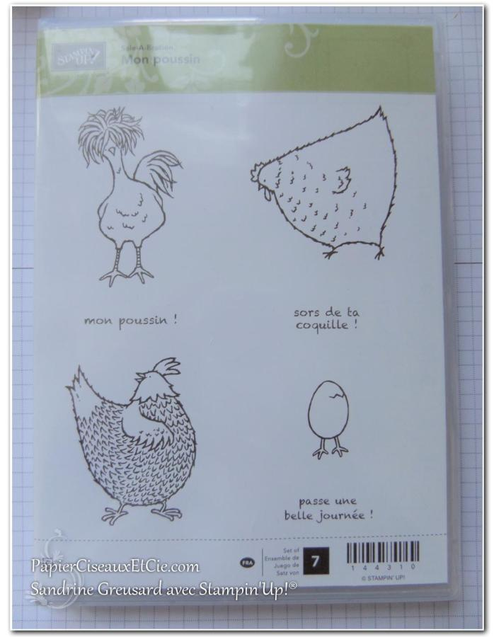 hey-chick-mon-poussin-sab-sale-a-bration-sab-2017-sandrine-papierciesauxetcie-demo-stampinup-144310