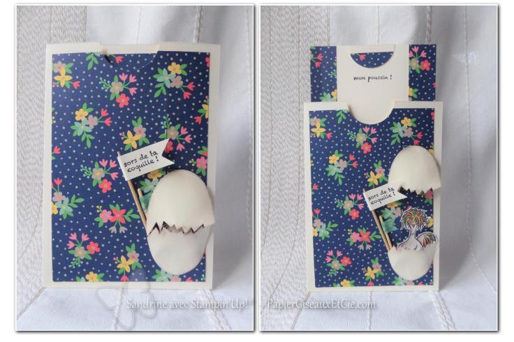 slider-card-carte-ascenceur-hey-chick-mon-poussin-sab-sale-a-bration-sandrine-papierciesauxetcie-demo-stampinup-ouverte-pin-it