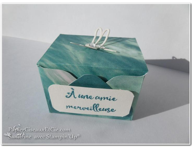 boite-cadeau-hotesse-detail-papierciseauxetcie-sandrine-avec-stampin-up-su