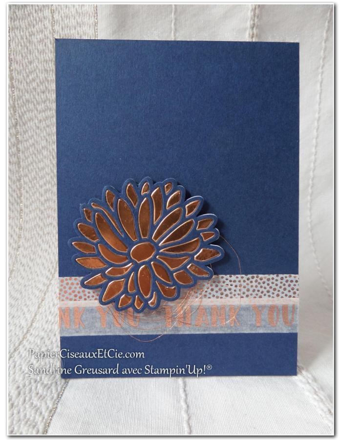 carte-remerciement-raison-speciale-papierciseauxetcie-stampin-up-su