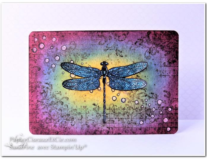 papierciseauxetcie-sandrine-stampin-up-songes-de-libellules-dragonfly-dreams-card-carte-timelees-textures