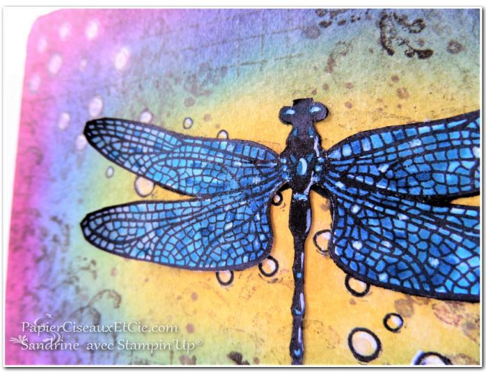 papierciseauxetcie-sandrine-stampin-up-songes-de-libellules-dragonfly-dreams-detail