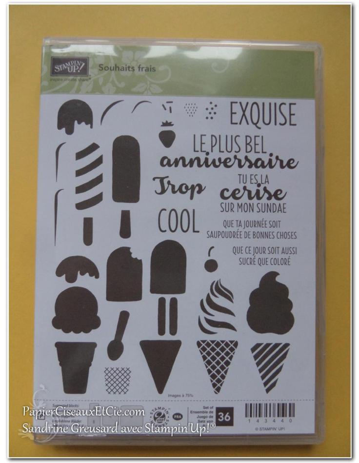 papierciseauxetcie-sandrine-stampin-up-souhait-frais-frozen-treat-friandises-glaces-smiley-1
