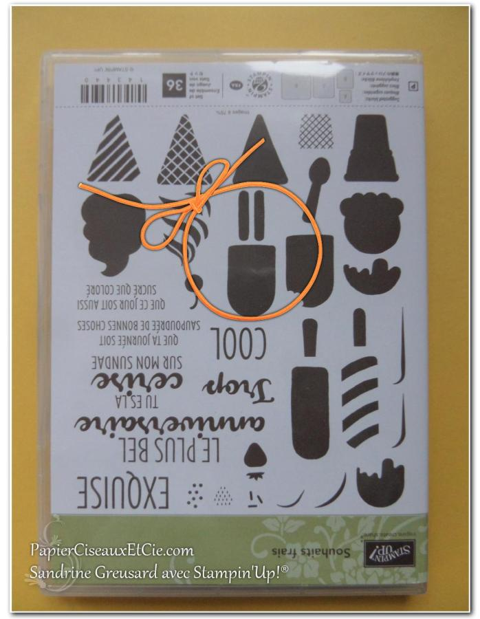 papierciseauxetcie-sandrine-stampin-up-souhait-frais-frozen-treat-friandises-glaces-smiley-2
