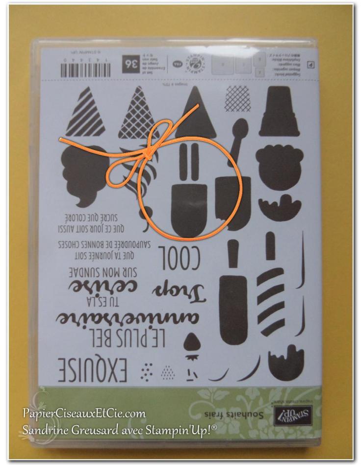 papierciseauxetcie-sandrine-stampin-up-souhait-frais-frozen-treat-friandises-glaces-smiley-2
