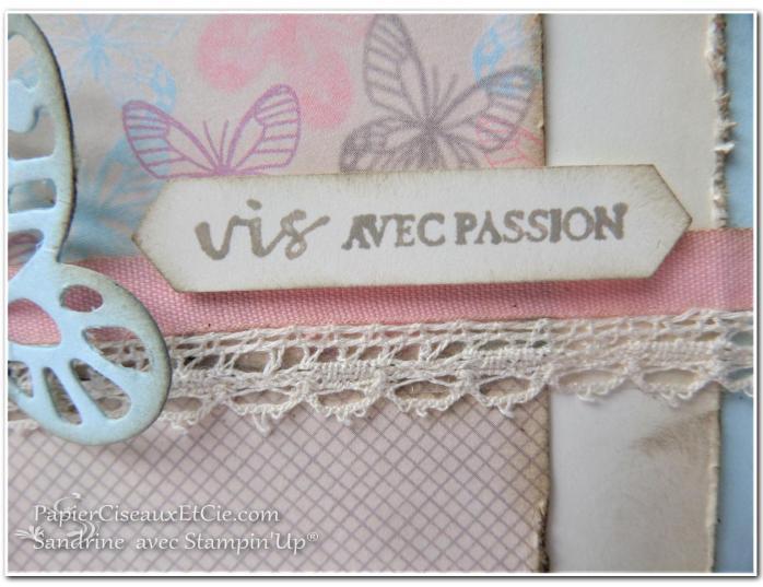 papierciseauxetcie-sandrine-stampin-up-papillon-audacieux-138135-resplendissante-143458-papier-amour-naissant-142788-detail-1-sketch-en-ligne-online