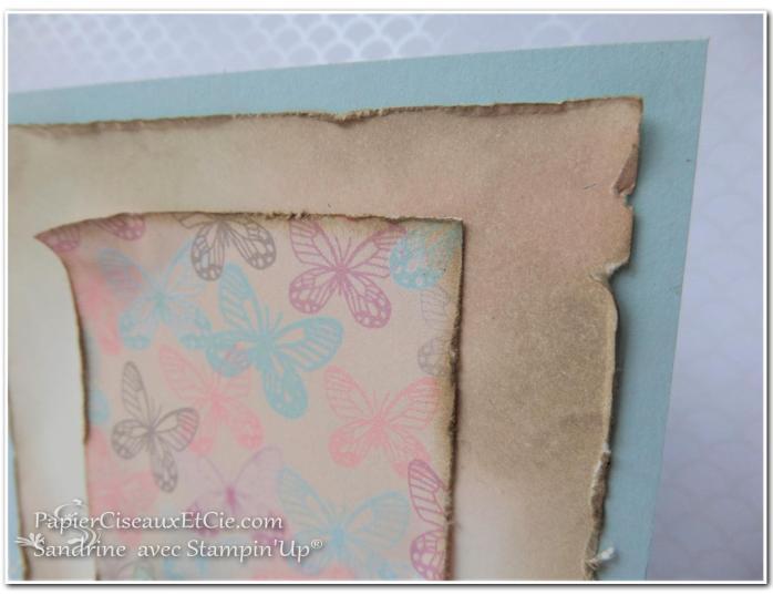 papierciseauxetcie-sandrine-stampin-up-papillon-audacieux-138135-resplendissante-143458-papier-amour-naissant-142788-detail-2-sketch-en-ligne-online