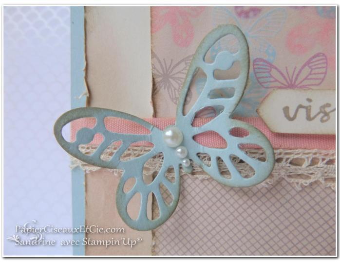 papierciseauxetcie-sandrine-stampin-up-papillon-audacieux-138135-resplendissante-143458-papier-amour-naissant-142788-detail-3-sketch-en-ligne-online